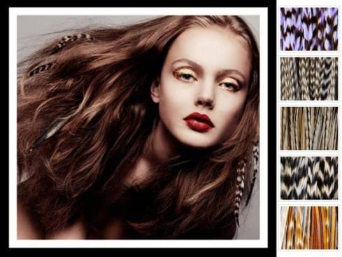Celebrity hair trends feather and tinsel hair extensions add add some flair to your hair pmusecretfo Gallery